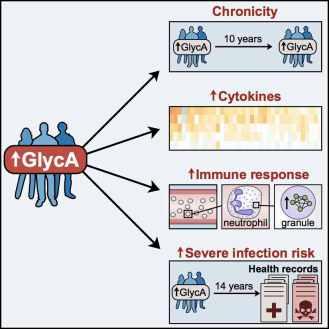 GlycA